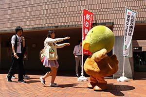 20160512_tamimaru3